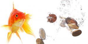 Mindfulness Tower Hamlets social enterprise